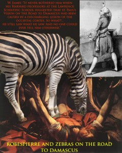 Robespierre and Zebras